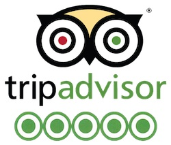 Trip Advisor En İyi Transfer Şirketi
